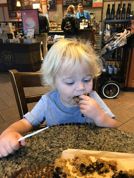 Digging into a blueberry bran muffin at Peets