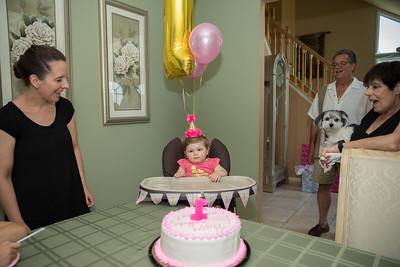 Emmy's 1st Birthday0032