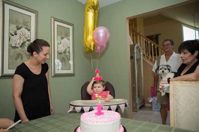 Emmy's 1st Birthday0033