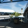 I love an airport with palm trees