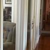 "Hazel reacts to mohawk v2.  Photo by John David Helms,  <a href=""http://www.johndavidhelms.com"">http://www.johndavidhelms.com</a>"