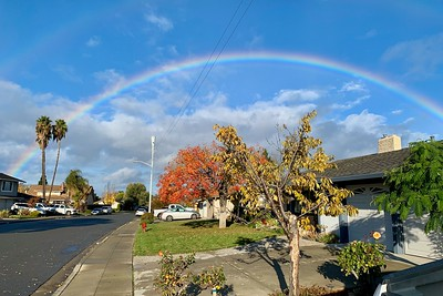A rare full rainbow from the front yard