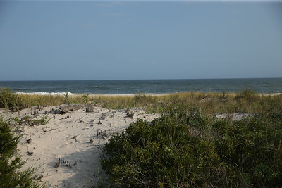BeachHouse0087