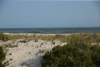 BeachHouse0088