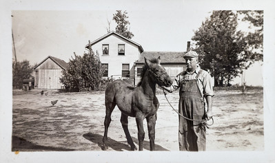 Howard Davis and Colt. Mother of Colt died sleeping sicknessin Iowa.