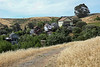 Homes in Port Costa from Carquinez Strait Regional Shoreline, 5/22/20