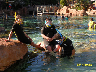 2013 Discovery Cove