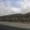 Flags flying along the freeway