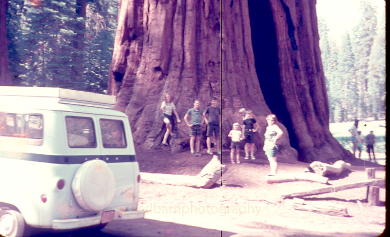 Yosemite,some of the side pictures my dad or my brother Jim took 45 years ago ,They didn't survive all the moves and storage well.