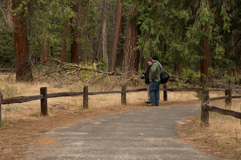 Evan and Tim ,Yosemite valley,walking towards the almost dry water falls.(winter water flow) both dressed for the cold morning.32 that morning.
