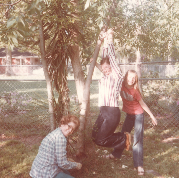 Joyce hanging on a tree I am trying to saw it down Keli