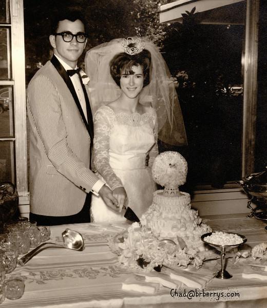 Joyce and Kenny Wedding-Cut the Cake