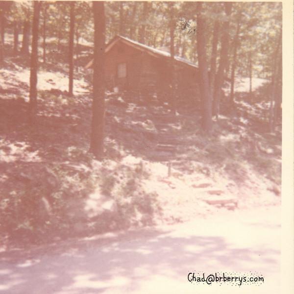Honeymoon Cottage in woods
