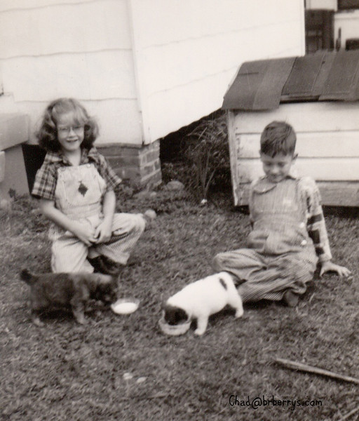 Joyce Royce and pups on Convention Street