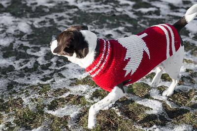 AJ Canada Sweater full