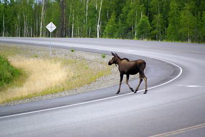 George Parks Highway