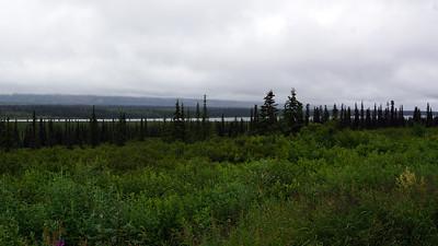 Denali was hidden by clouds.