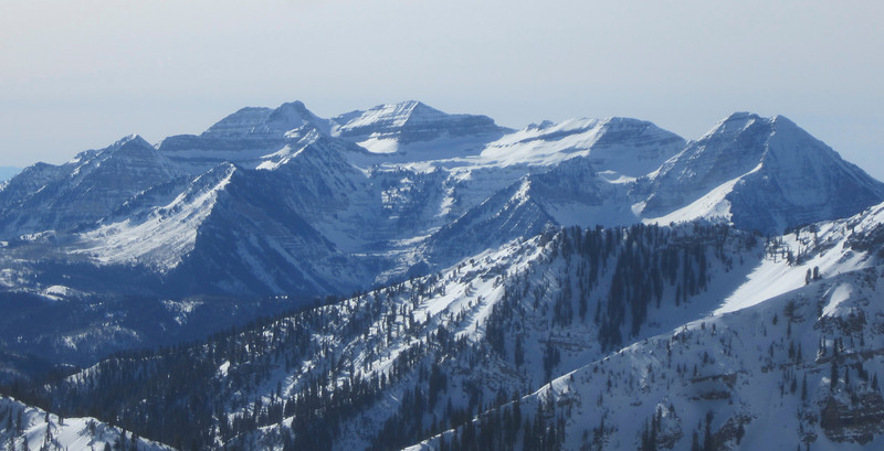Mt. Timpanogas as seen from Alta!