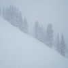 Another Powder Day at Alta.