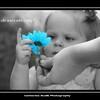 LUNA 7 16 2015 CATHERINE KRALIK PHOTOGRAPHY  GRAPHICS  (26)