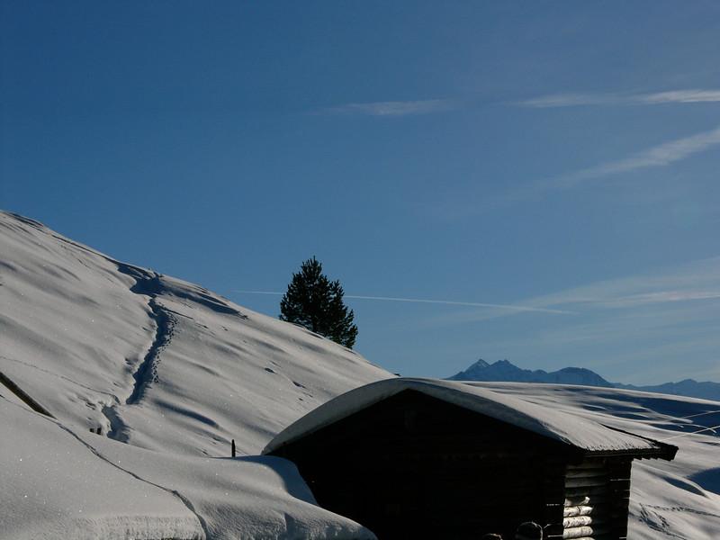 Wandern zur Steinalm im Schnee