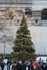TheTree at Bryant Park