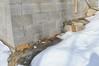 Accord Construction 2011-2-9-24