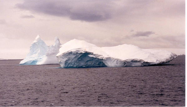 iceberg 7 two at sea