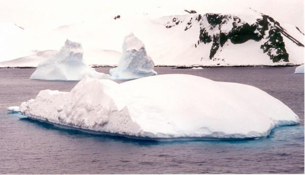 iceberg 4  land