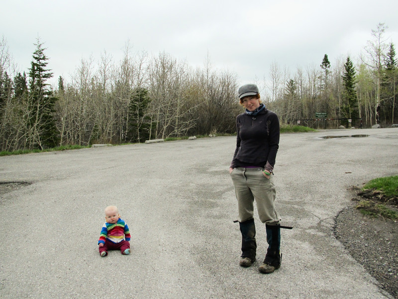 <b>24 May 2011</b> Barrier Mountain - Mama and Finn waiting in the carpark
