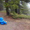 <b>24 May 2011</b> Barrier Mountain - Finn is unconcerned when we tell him we're going to leave him to be eaten by bears