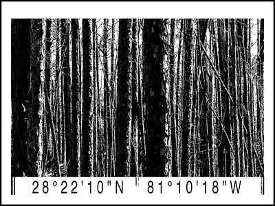 Barcode treesV1