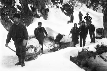 The typical sledges loaded with the minimum 1,000 pounds of supplies required by the Canadian government for each prospector entering the Yukon.  Richard Baylis wrote about this in his letters home to Colorado.