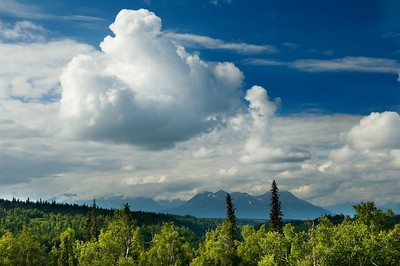 Afternoon thunderclouds building as we look out towards Mount McKinley.