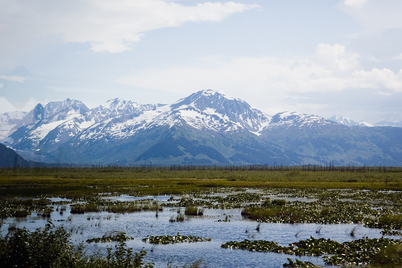 This is a fairly typical view in the part of Alaska we were in.  Rivers, lakes and marshes in the lowlands, fed year-round by glaciers coming off neaby mountains.
