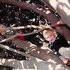 April 1984<br /> 262 Marich Way, Los Altos, CA<br /> Craig (3) and Ryan (4) Murray climbing the magnolia tree in the front yard