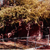 October 1981<br /> 144-D Escondido Village, Stanford, CA<br /> Lived here while Bob got his master's degree at Stanford.
