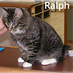 Ralph adopted from SBVH on 1/9/06.