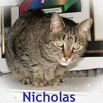 Nicholas adopted from CHAC on 1/5/06.