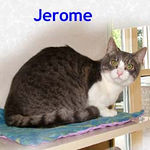 Jerome adopted from CHAC on 1/15/06.