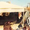 Feb. 1991<br /> Marine World, Vallejo
