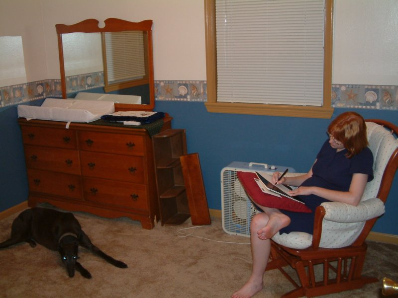 HAvoc keeps Sarah company as she writes a letter in Alex's new room, previously our library and havoc's place to take it easy.