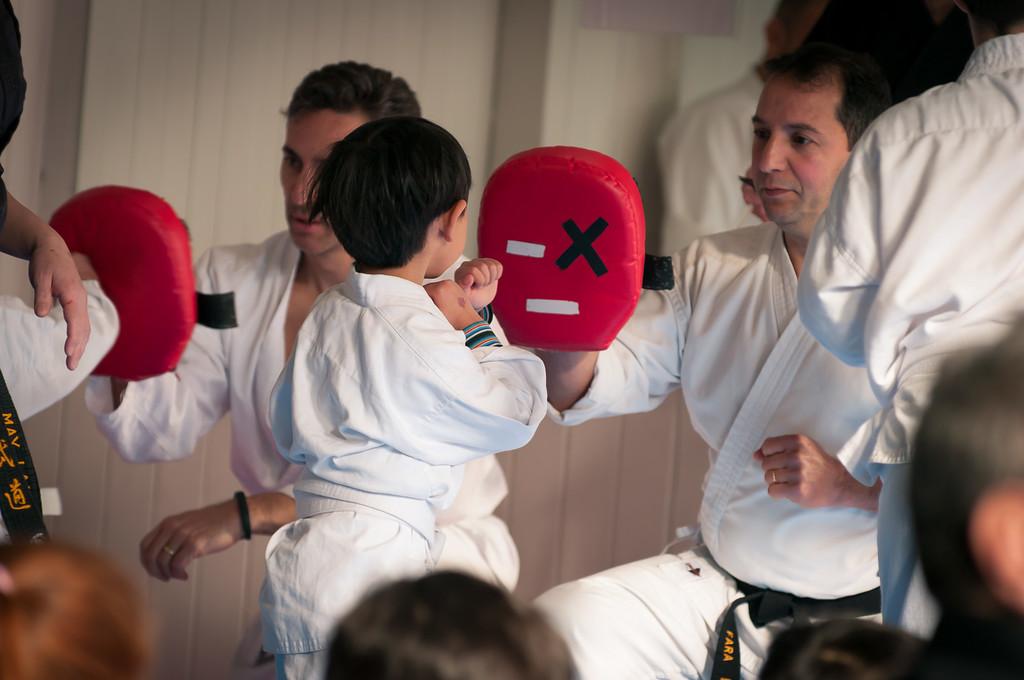 Alex Martial Arts 2014