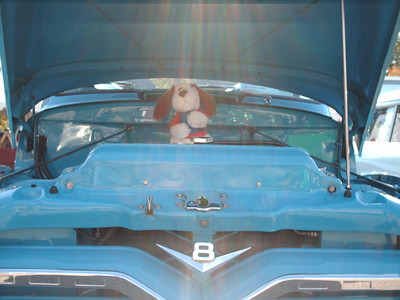 carshow2008 007