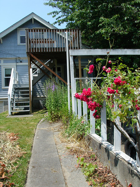 the backyard: my tortuga goes to the right, we are upstairs and thats our deck.