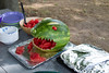 07-22-2012-Dinosaur_Watermelon-8327