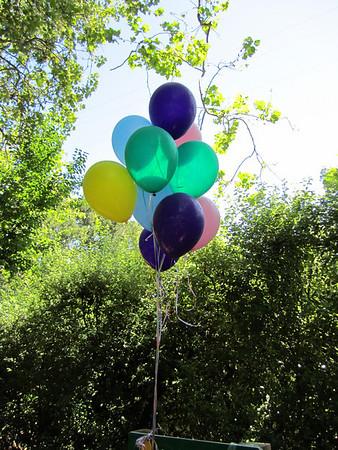 Alma's and Sohrob's Party 2010