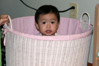 Eeek, I'm stuck in a basket!