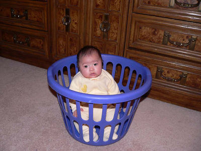 My time out in the laundry basket.