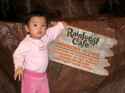 Rainforest Cafe model!